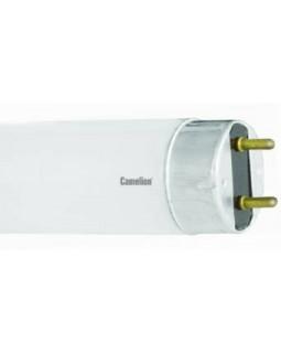 Лампа люм. 10 Вт d=26mm G13 L=346mm 4200К холодный